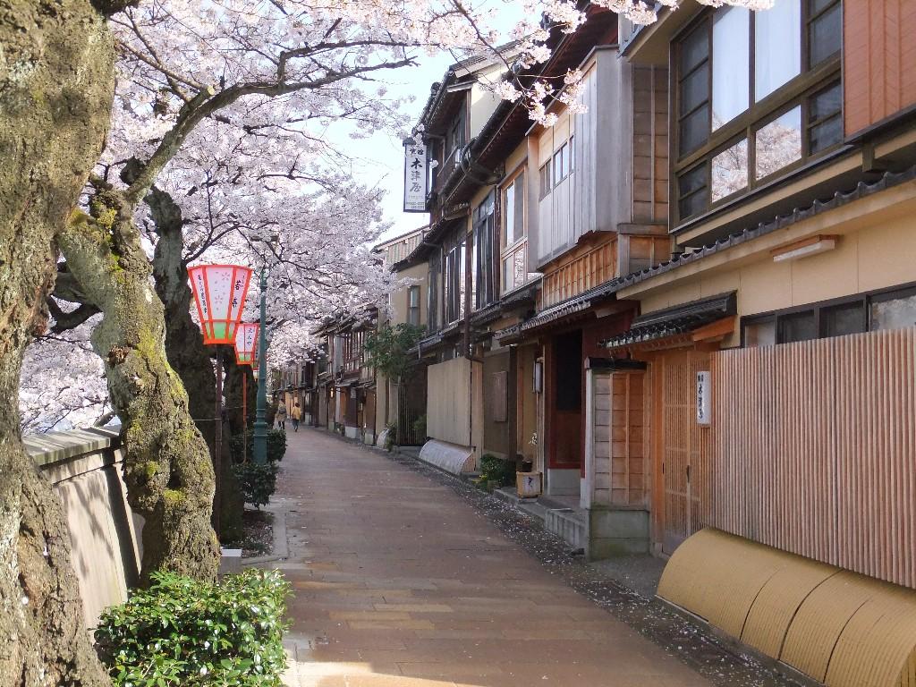 Bästa tiden att åka till Japan – en klimatguide