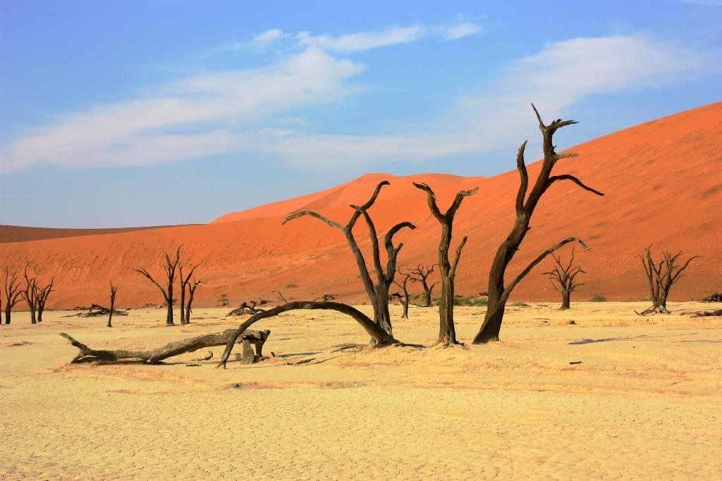 Vår resa till Namibia