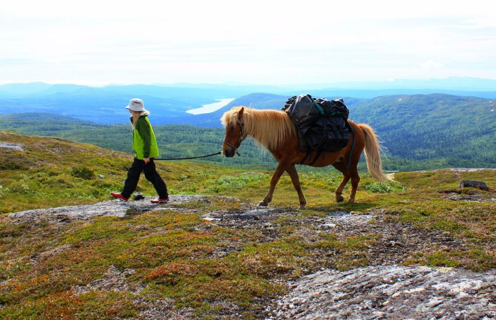 Vandra med packhäst i jämtländska Jorm