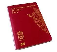 olycka på resan pass