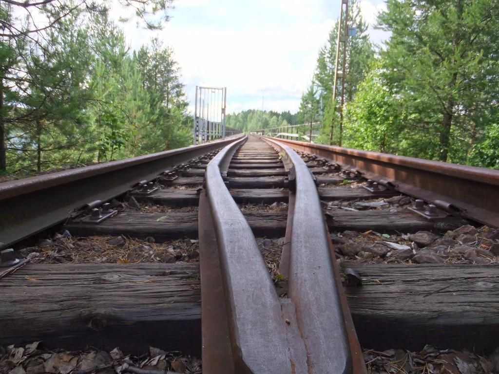 utflykter från umeå: järnvägsbro i tallberg