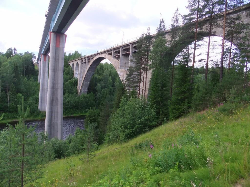 utflykter från umeå: broarna i tallberg