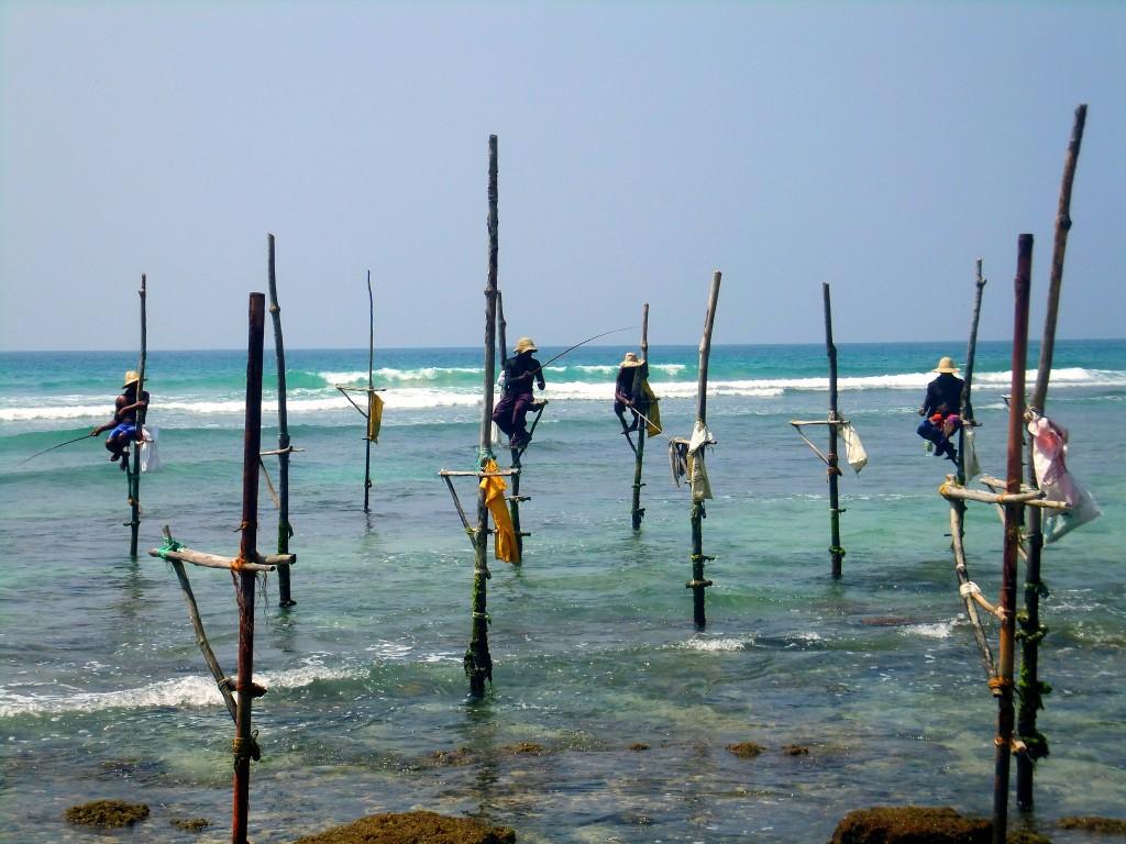 Vår resa till Sri Lanka – en reseberättelse