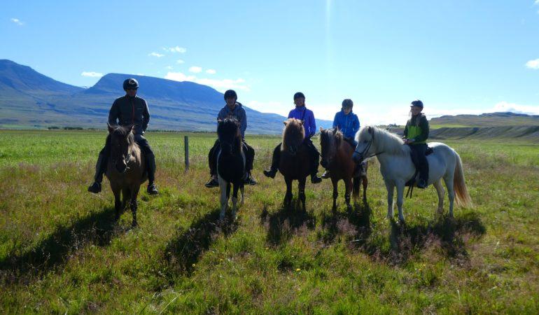 Att rida islandshäst på Island