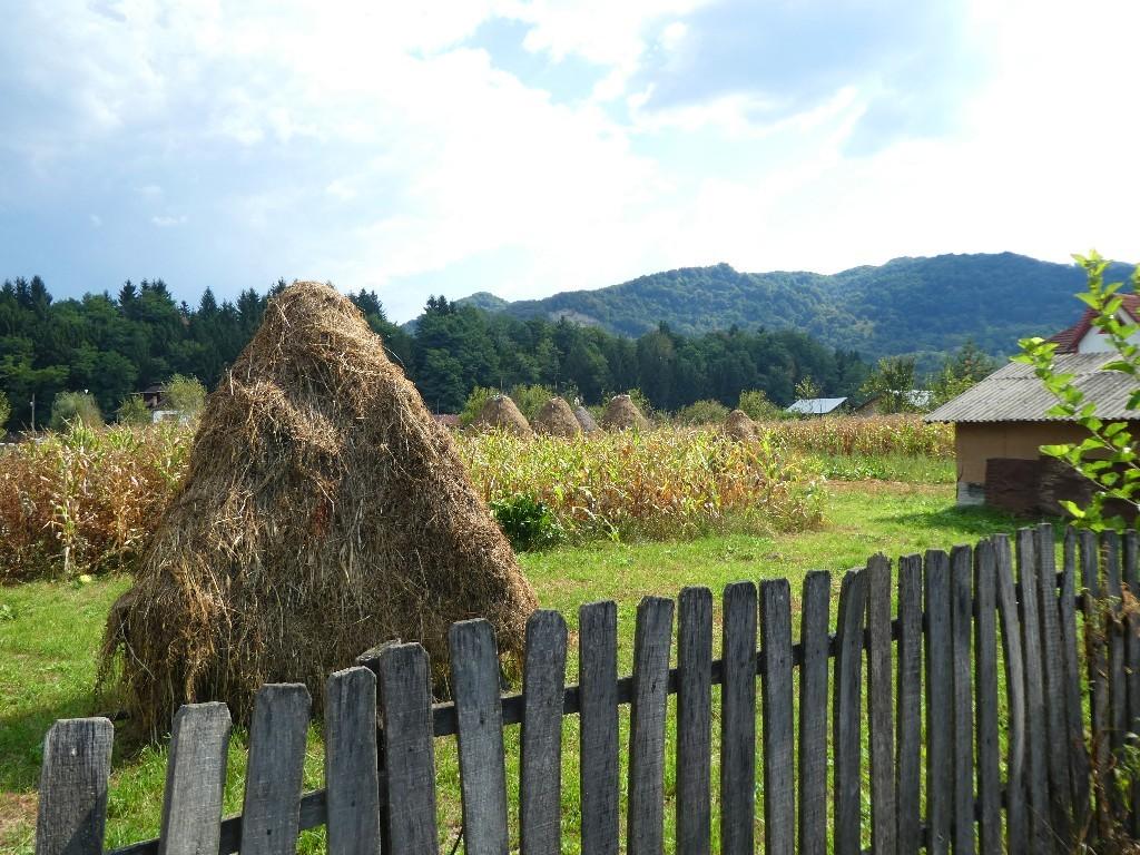 resa till Transsylvanien