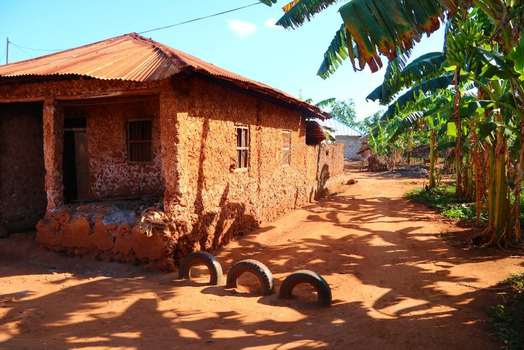 Utflykter på Zanzibar