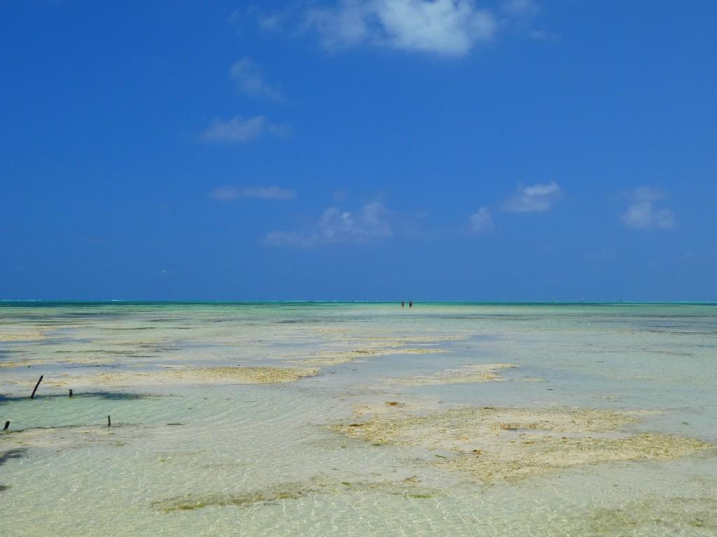 tidvatten på Zanzibar
