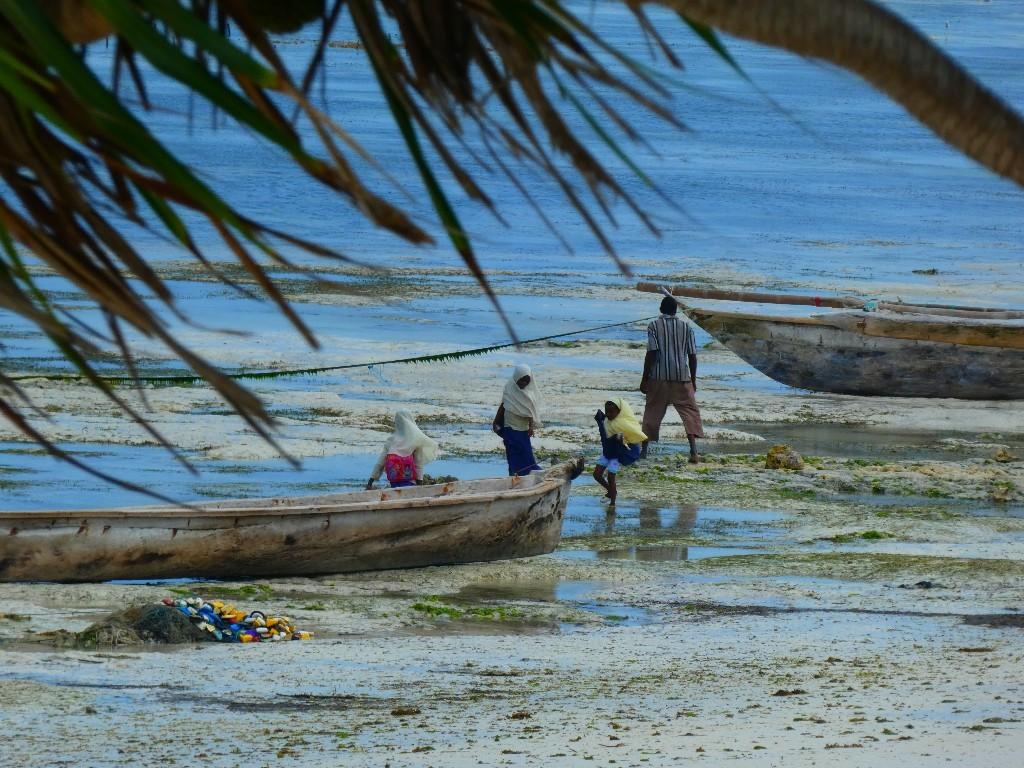 innan du åker till Zanzibar