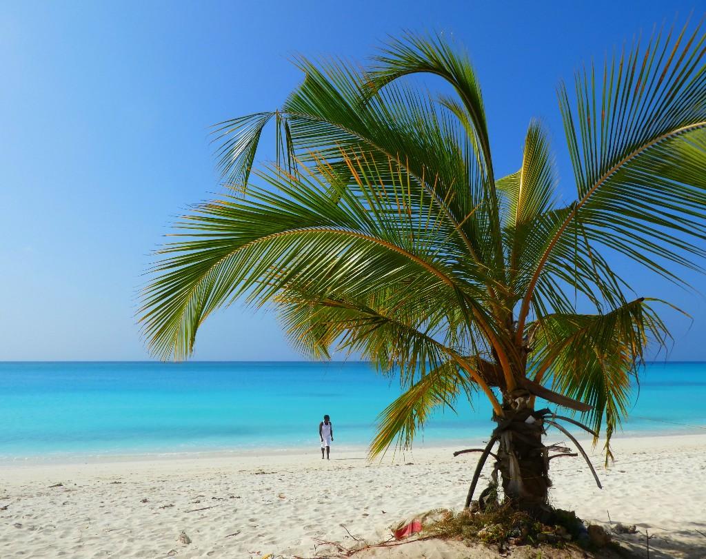 4 saker du måste ha koll på innan du åker till Zanzibar
