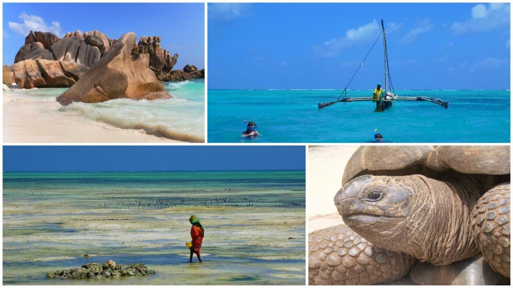 Seychellerna eller Zanzibar?
