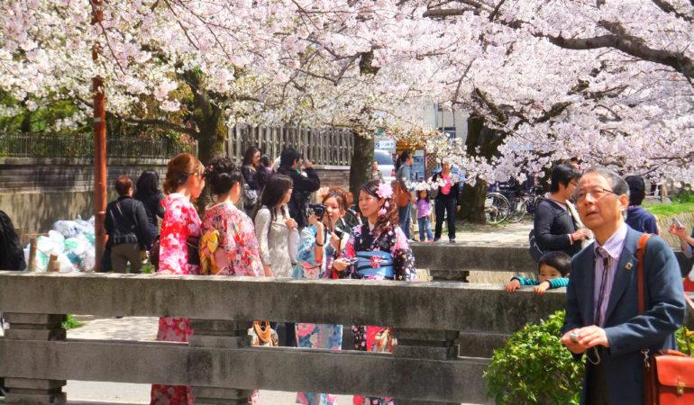 12 saker att se och göra i Kyoto