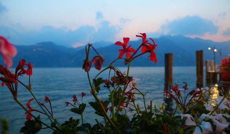 Vår resa till Gardasjön och Venedig