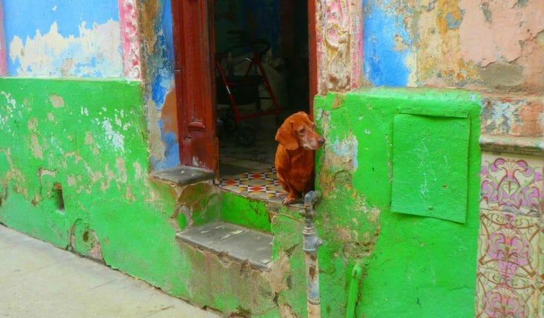 De öppna dörrarna i Havanna
