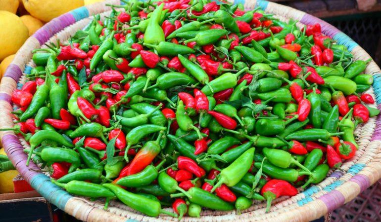 Marockansk mat – och vad vi tyckte om den