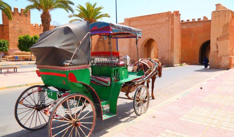 Hemma igen från Agadir – och om att åka på pressresa