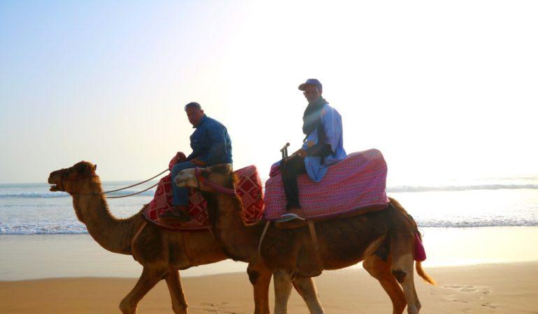 Varför ska man resa till Agadir? – 7 bra anledningar – och hur vi själva skulle lägga upp ett nästa (längre) besök