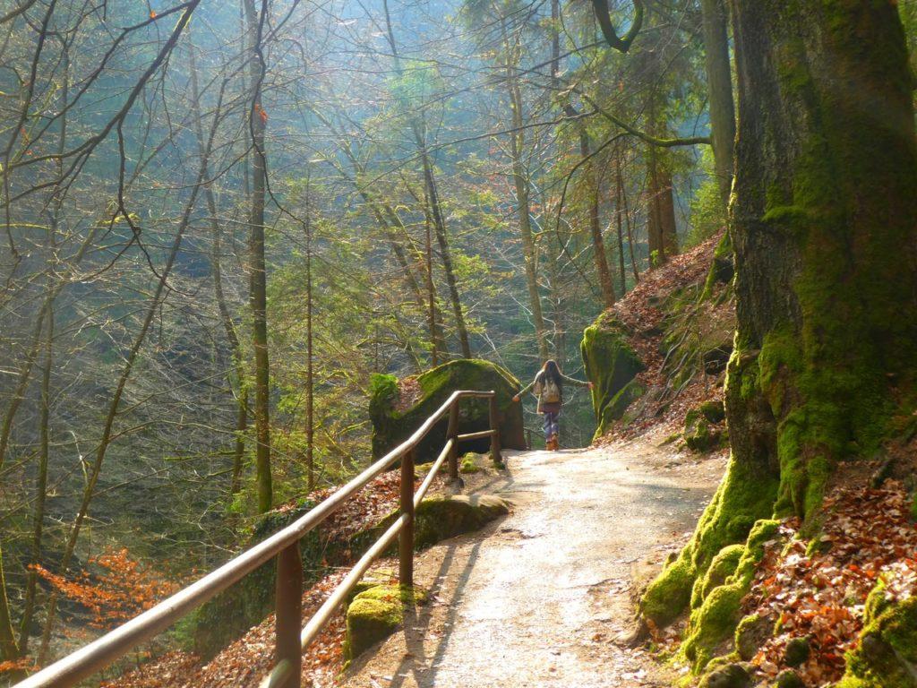Vandring i Bohemian Switzerland