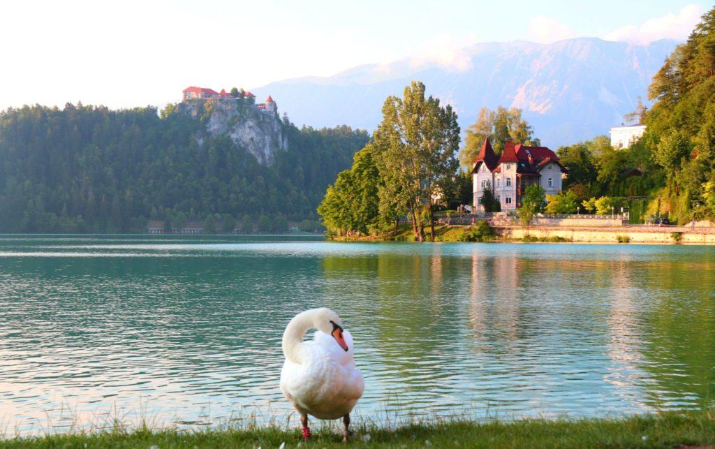 Var ska man bo i Slovenien?