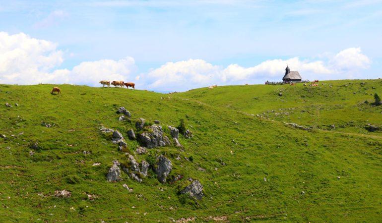 Velika Planina – VM i dumhet och det närmaste vi kommer vandring i Slovenien