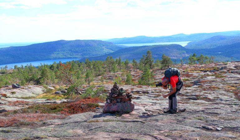 Sveriges nationalparker – vilka är de och bästa vandringarna?