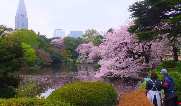 13 saker att se och göra i Tokyo – våra bästa tips