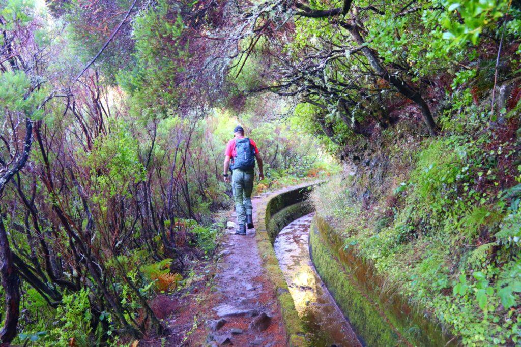 se och göra på Madeira