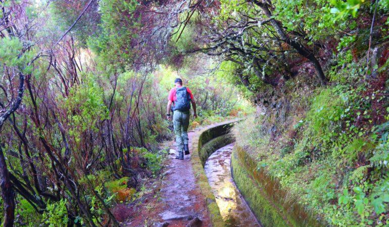 Levadavandring på Madeira: Paul da Serra till Rabacal