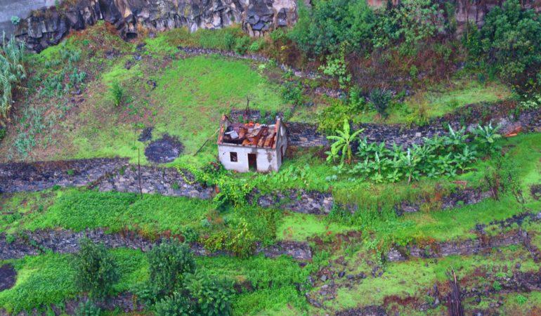 Hemma igen från Madeira – mellan det stora blå och det skimrande gröna