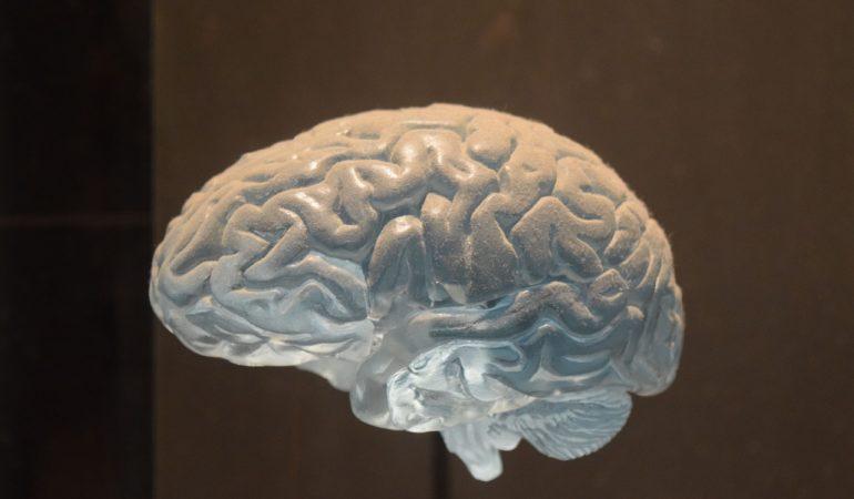 Varför fick Christofer en stroke? – Läkarna har hittat några möjliga förklaringar