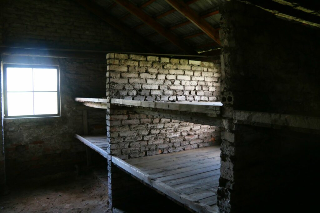 Auschwitz - höjdpunkter i gamla Östeuropa