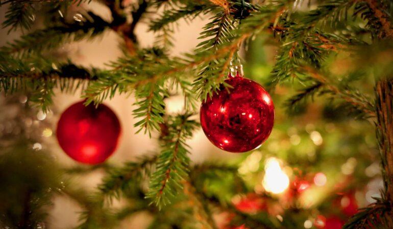 Vi önskar alla läsare en riktigt skön jul – och tipsar om 10 softa tidsfördriv till ledigheten