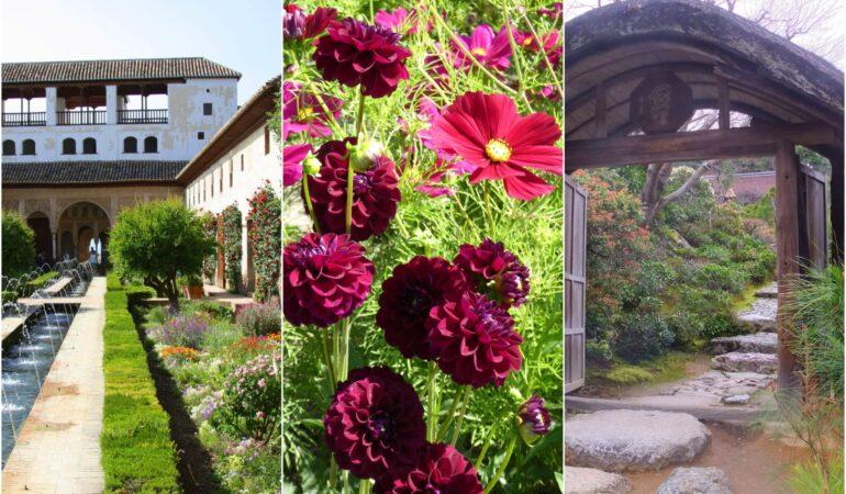 Bästa platserna för att besöka vackra trädgårdar på resa