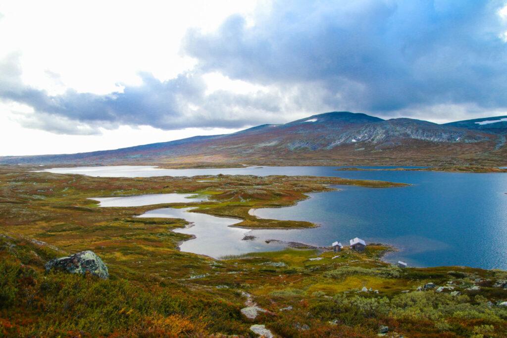 Guldtur 17: Svansjön-Bolagen