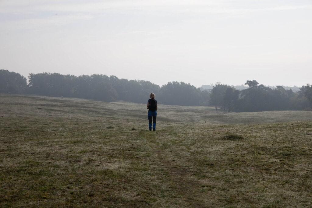 Bästa vandringen på Skåneleden