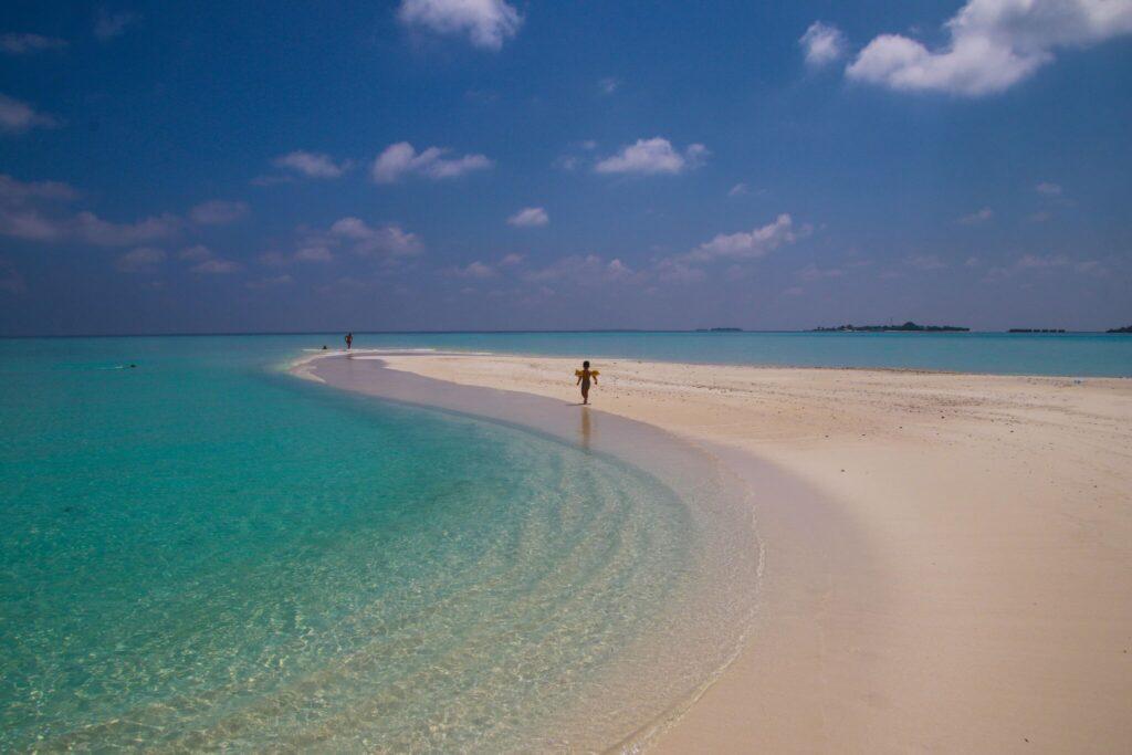 Maldiverna eller Seychellerna