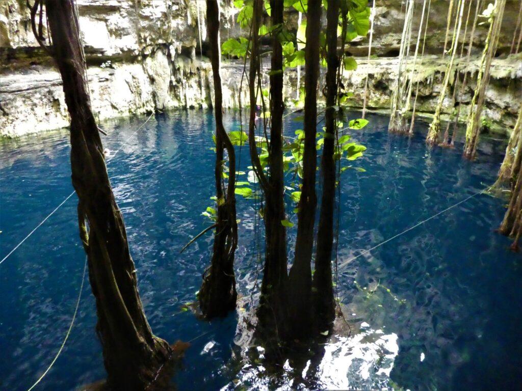 bada i en cenote