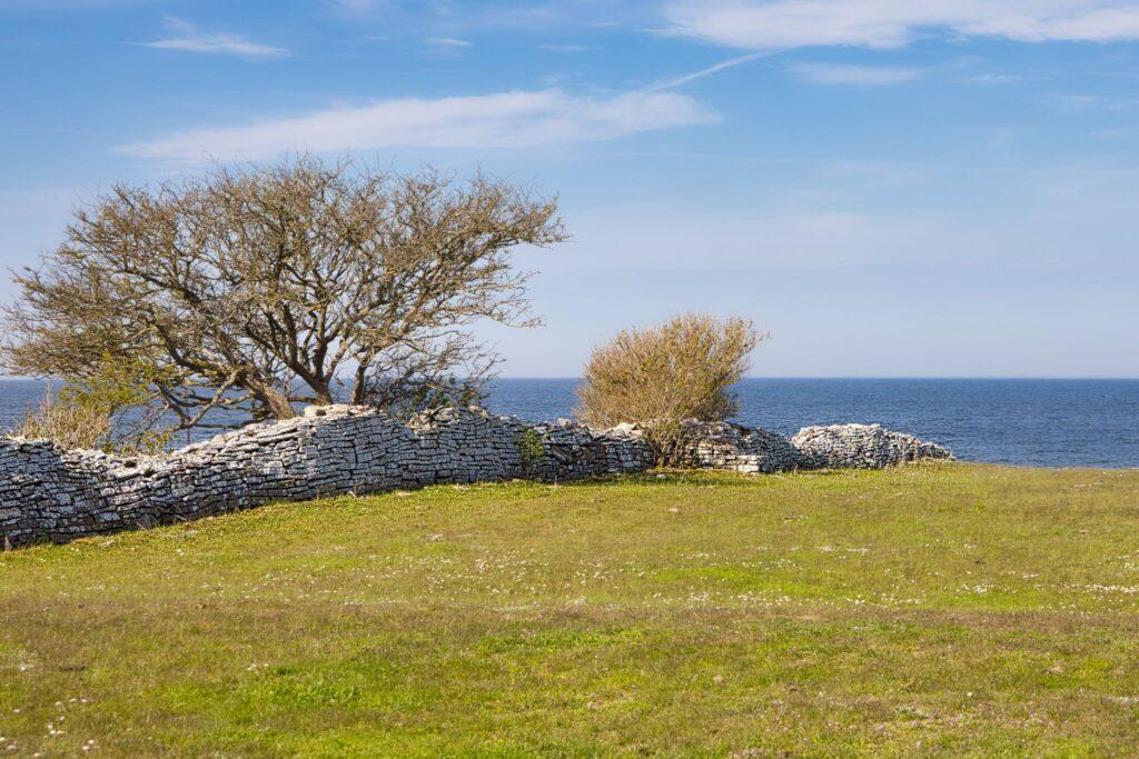 Världsarvet Södra Ölands odlingslandskap